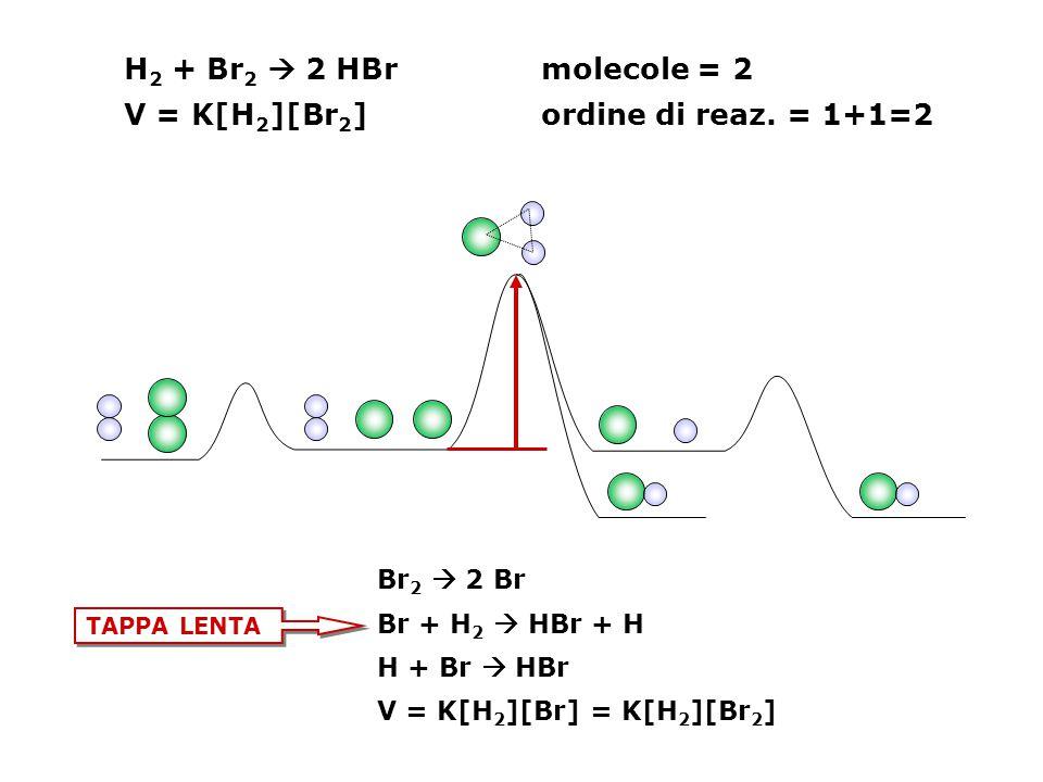 V = K[H2][Br2] ordine di reaz. = 1+1=2